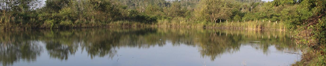 Proyecto Agua Segura de Calakmul, Campeche